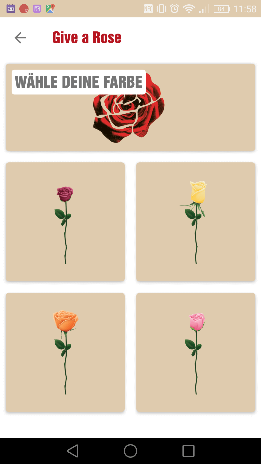 Rosenauswahl